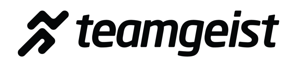 Teamgeist Logo font black